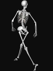 A0AFJ9 Illustrative diagram showing skeleton walking happily rear shot